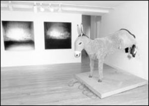 Kickass sculpture: Eric Wesley's Kicking Ass is a full-scale model of a donkey who has knocked a hole in the museum wall.